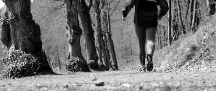 Lauftraining für Ein- und Aufsteiger: Die wichtigen Phasen im Trainingsjahr