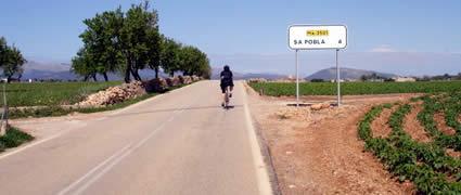 Trainingslager-Klassiker Mallorca