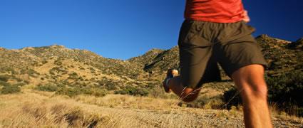Der 12-Wochen-Plan bringt die Form für einen Triathlon über die olympische Distanz