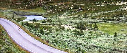 Läufer beim Norseman. Naturerlebnis und Selbsterfahrung.