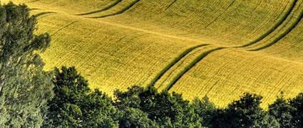 Frag den Bauern: Sanft und wellig ist der Kraichgau