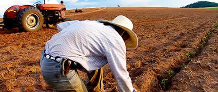 Zeit der Saat: In der BASE-Phase wird der Grundstein zum Erfolg gelegt